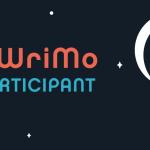 NaNoWriMo – šílená a sebevražedná mise